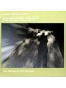 CD - The Widow In The Window